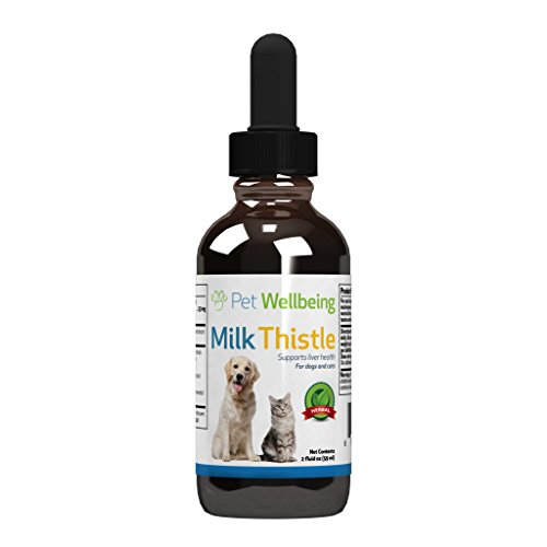 Pet Wellbeing - Milk Thistle for Cats - Natural Support for Feline Liver health - 2oz (59ml)