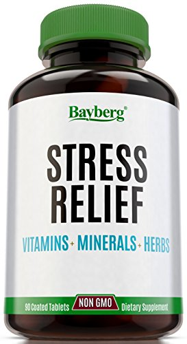 Multivitamins & Anti Stress formula with Minerals and Herbs. Immune and Mood Support Supplement, Anxiety & Fatigue Relief. Natural Antioxidant with Vitamin C, B Complex, Magnesium, Chamomile & more