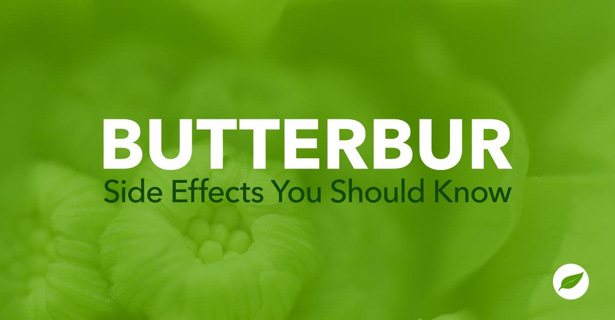 butterbur side effects