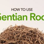 How to Use Gentian Root for Your Health