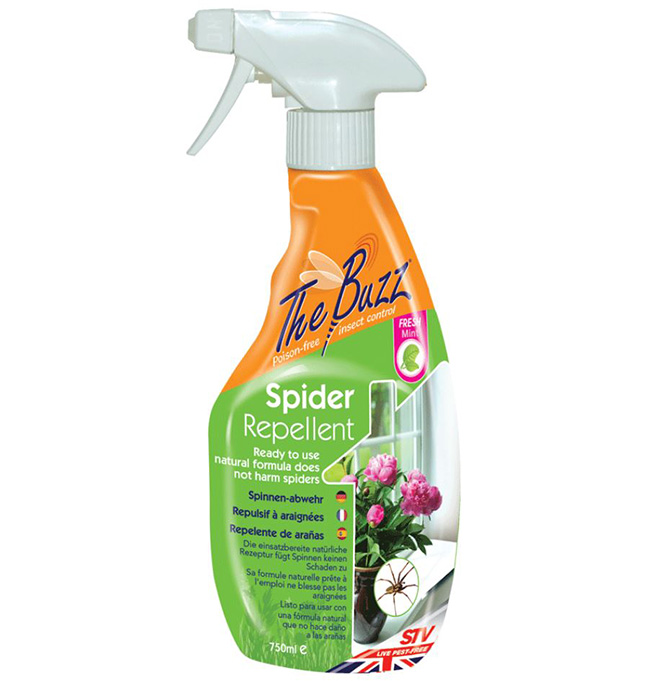 the buzz natural spider repellent