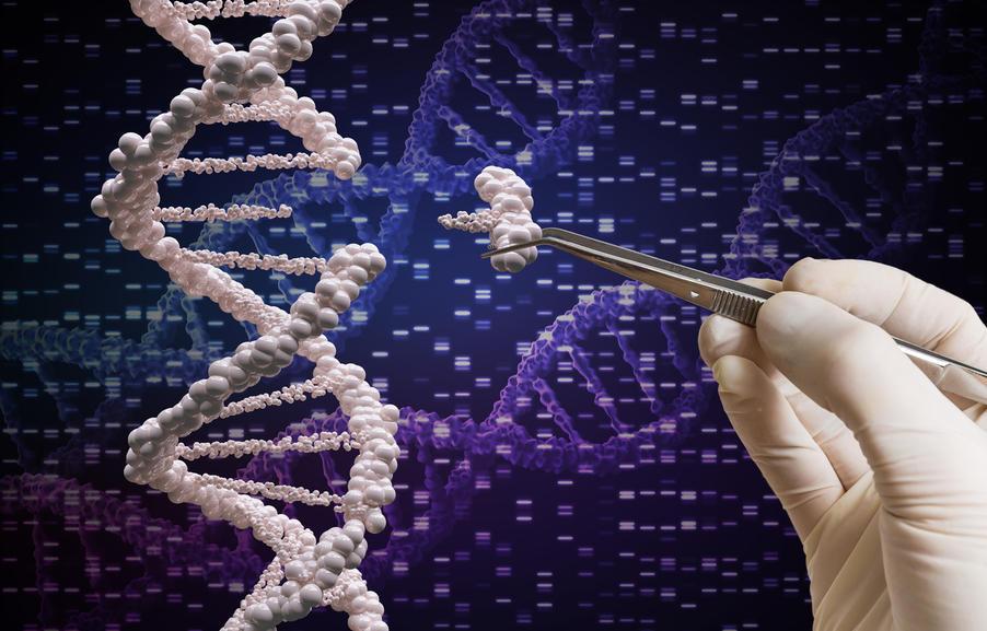 scientist splices genes