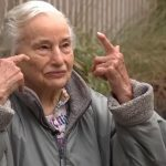 Oregon woman, 94, stung 74 times after crossing underground wasp nest