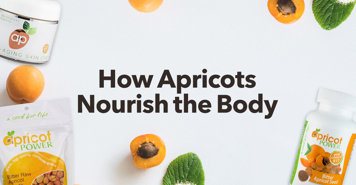Apricot-nourishes-body