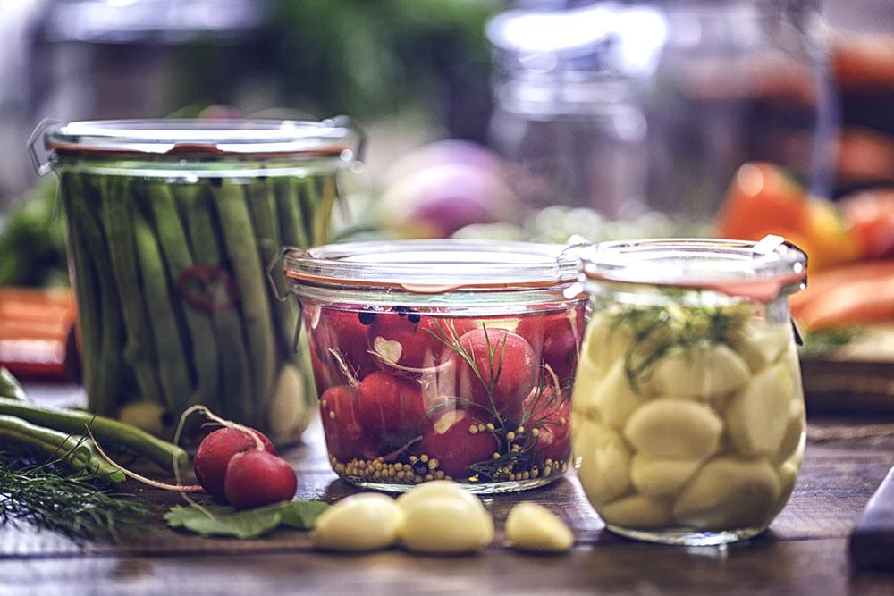 zenflore-fermented-food.