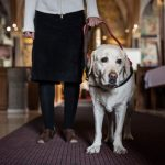 'All are welcome': Florida church hosts dog-friendly service