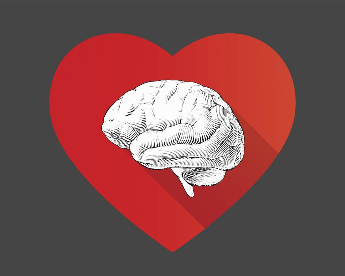 illustration of brain and heart