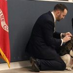 Sully Gets New Gig As Walter Reed Facility Dog