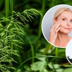 Horsetail May Help Improve Your Skin and Bone Health
