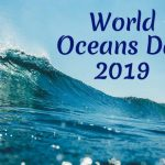 World Oceans Day 2019: Date, Theme and Significance of The Day Honouring Ocean and Its Habitat