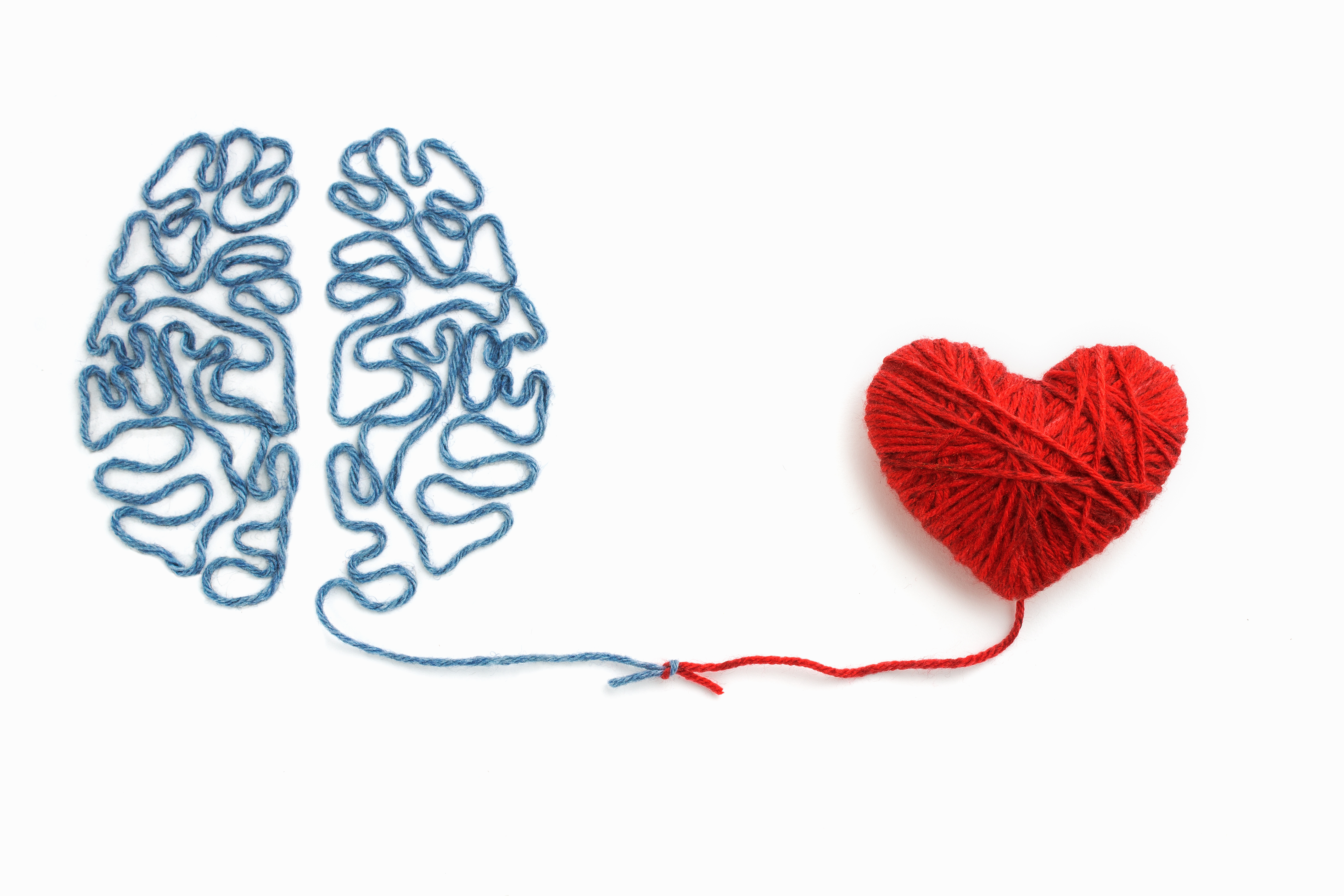 heart and brain positive connection