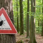 This Tick-borne Virus Can Be Transmitted Within Minutes