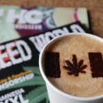 Cannabis And The United Kingdom: Where Are We Now?