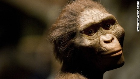 How did Lucy, our early human ancestor, die 3 million years ago?