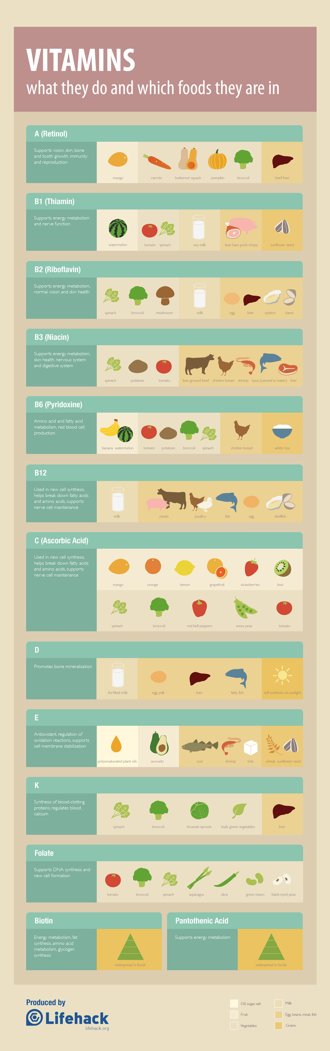 Vitamins Cheat Sheet Infographic