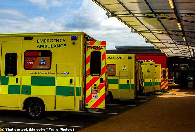 NHS statistics published this morning showed there were a total of 2.1million visits to accident and emergency departments in December but only 1.56million patients were seen within the target four hours (stock image)