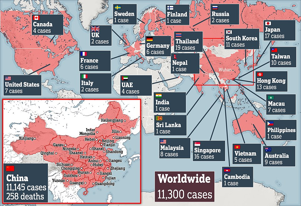 More than 11,000 cases have been confirmed in 22 countries and territories around the world