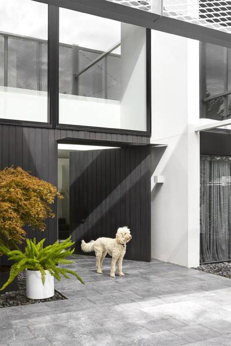 WELCOME: A facade offers privacy and shade on the north side of the house. Photo: David Kulesza
