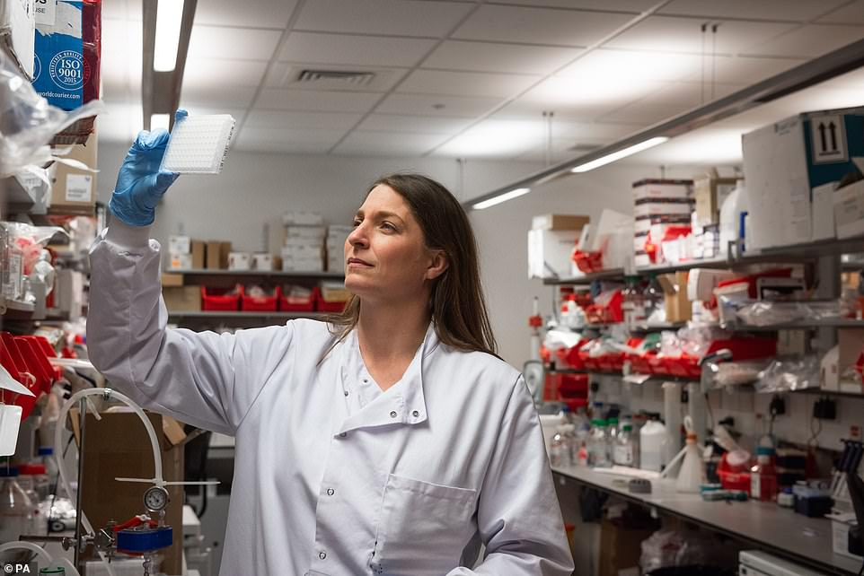 A researcher working on the AstraZeneca vaccine in a laboratory at Oxford's Jenner Institute, which helped to develop the shot - leading Britain to say that it has a right to the doses it ordered despite the EU's threat to block exports